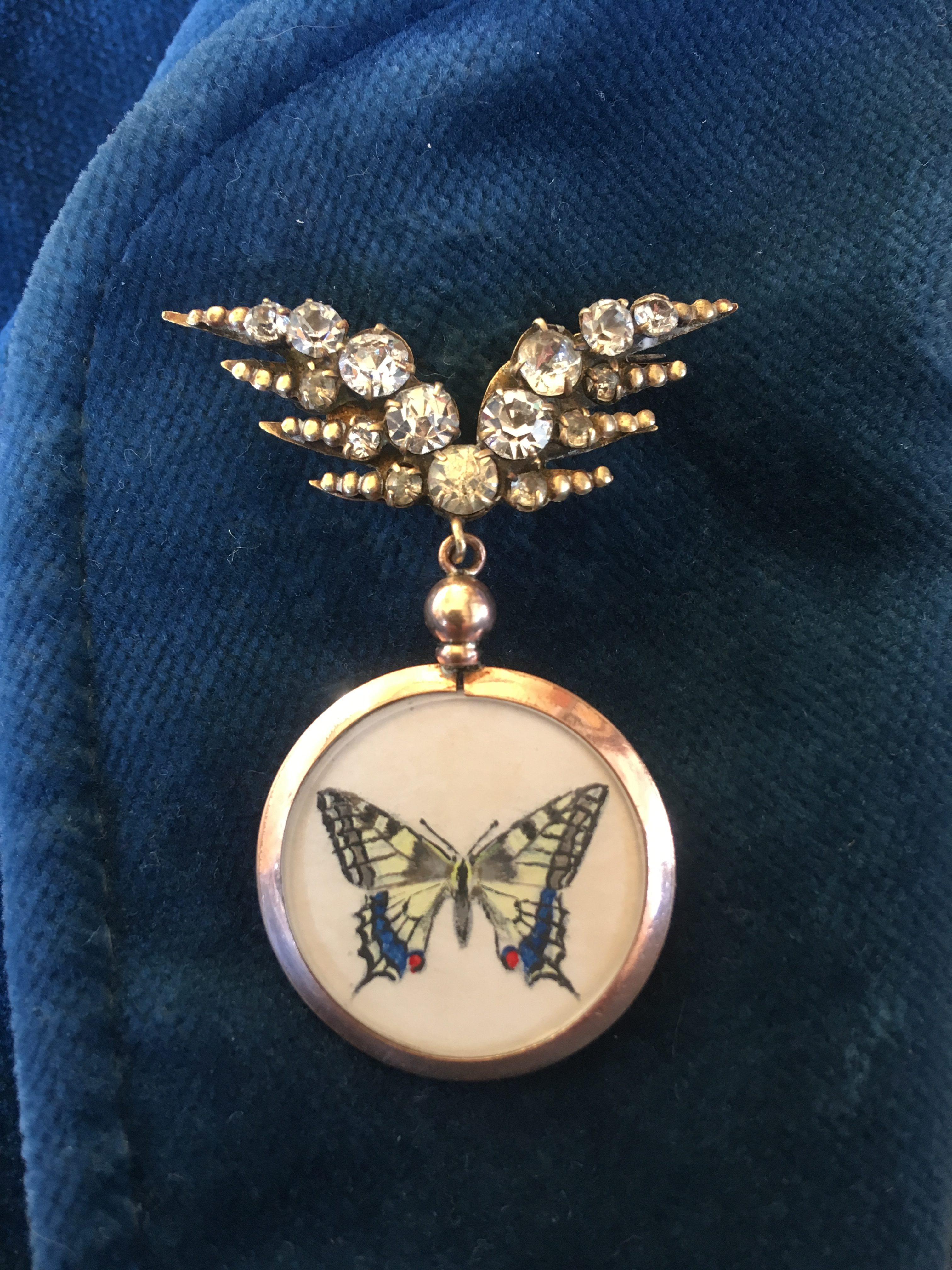 Butterfly brooch, hand-painted Swallowtail butterfly by Charlotte at Treespeake
